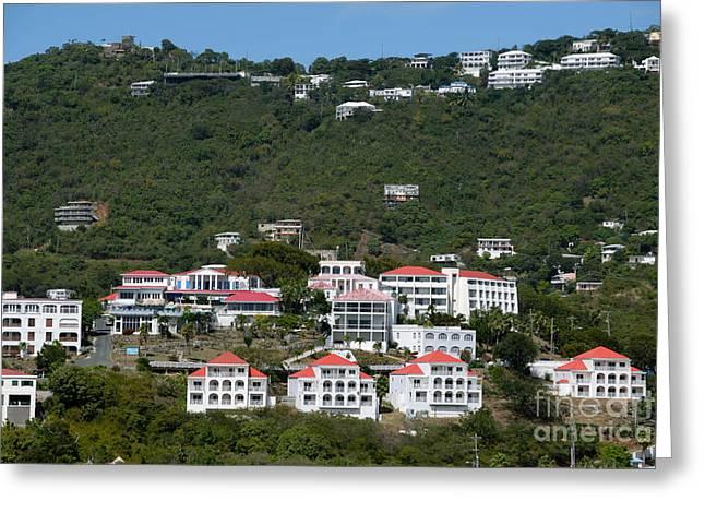 Caribbean Port Greeting Cards - St Thomas USVI Greeting Card by Amy Cicconi