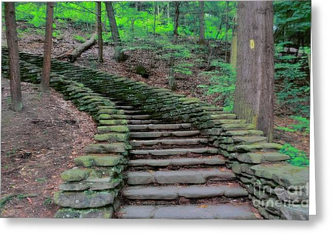 Struckle Greeting Cards - Stairway In The Woods Greeting Card by Kathleen Struckle