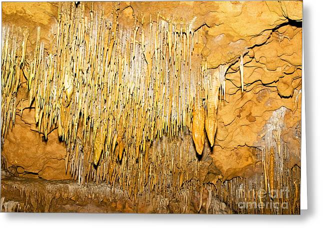 Cavern Greeting Cards - Stalactite Formations In Florida Greeting Card by Millard H. Sharp