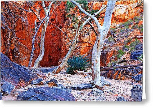 Chasms Greeting Cards - Stanley Chasm Greeting Card by Bill  Robinson