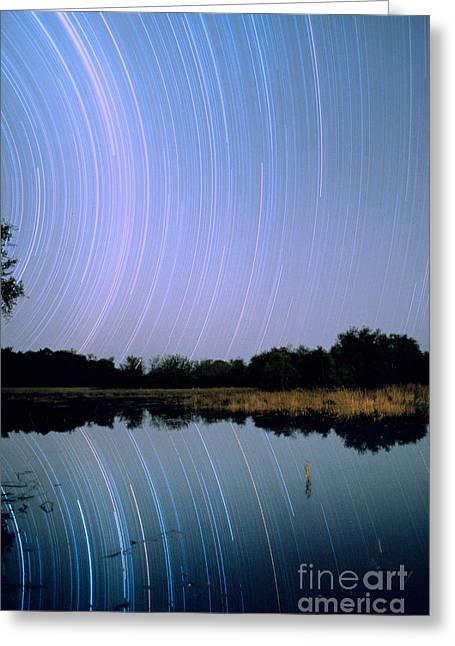 Reflecting Water Greeting Cards - Star Trails Greeting Card by Gregory G. Dimijian, M.D.