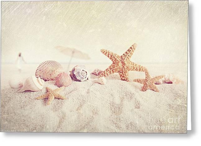 Unbrella Greeting Cards - Starfish and seashells at the beach Greeting Card by Sandra Cunningham
