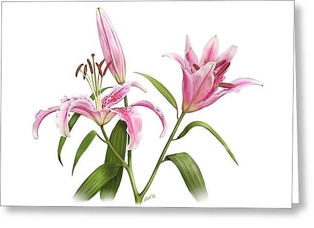 Oriental Tiger Greeting Cards - Stargazer Oriental Lily Greeting Card by Artellus Artworks