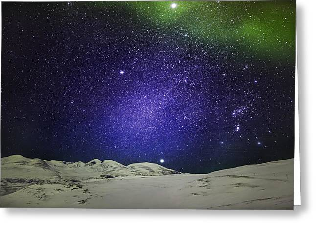 Color Green Greeting Cards - Starry Evening With The Aurora Borealis Greeting Card by Panoramic Images