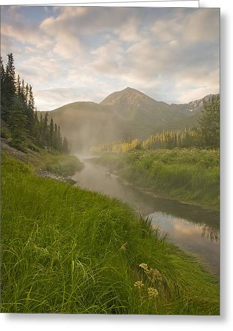 Steam Rising From Moores Hot Springs Greeting Card by Peter Mather