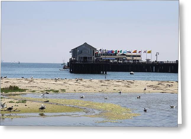 Stearns Wharf Santa Barbara Greeting Card by Christiane Schulze Art And Photography