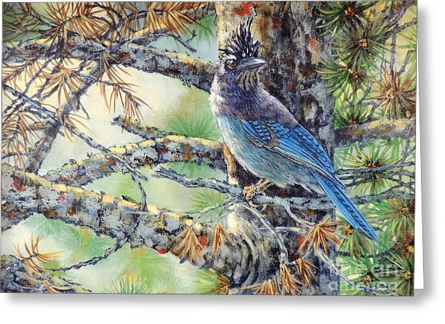 Stellar Paintings Greeting Cards - Stellars Jay Greeting Card by Sandra Williams