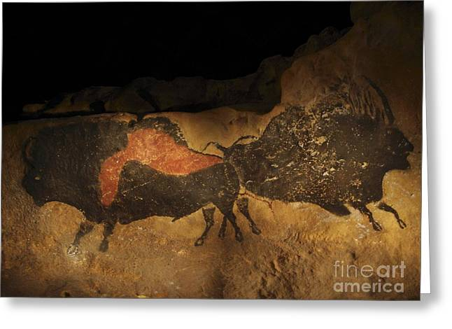 Anthropological Art Greeting Cards - Stone-age Cave Paintings Lascaux Greeting Card by Javier Truebam MSF SPL