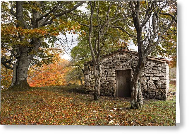 Mountain Cabin Greeting Cards - Stone Cabin In Autumn Forest Greeting Card by Mikel Martinez de Osaba