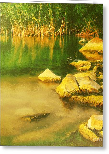 Water Filter Paintings Greeting Cards - Stones in front of the reed Greeting Card by Odon Czintos