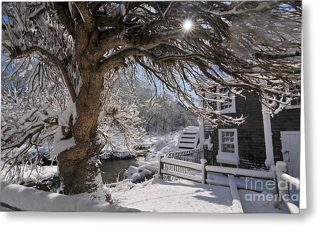 Catherine Wheel Greeting Cards - Stony Brook Grist Mill Greeting Card by Catherine Reusch  Daley