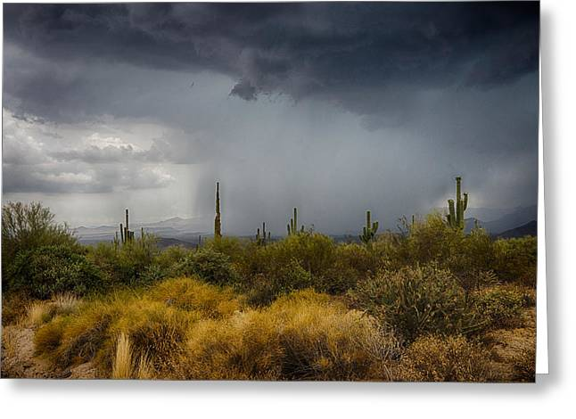 Storm Chasing Greeting Cards - Stormy Desert Skies  Greeting Card by Saija  Lehtonen