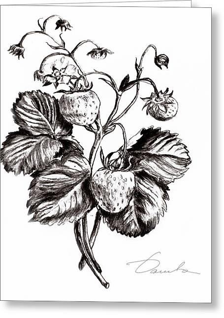 Strawberries Greeting Card by Danuta Bennett