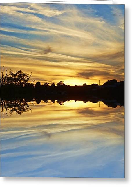 Sunset Prints Greeting Cards - Streaks of gold Greeting Card by Sharon Lisa Clarke
