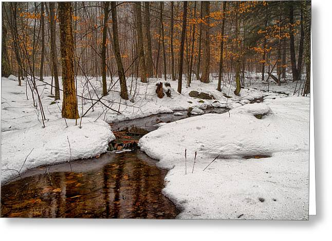 Snowy Woods Greeting Cards - Stream Through The Misty Winter Woods Greeting Card by Jeff Sinon