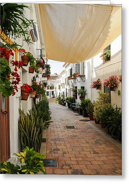Tetyana Kokhanets Greeting Cards - Street Of Benalmadena  Greeting Card by Tetyana Kokhanets