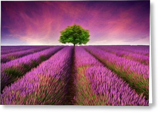 Essential Greeting Cards - Stunning lavender field digital painting Greeting Card by Matthew Gibson