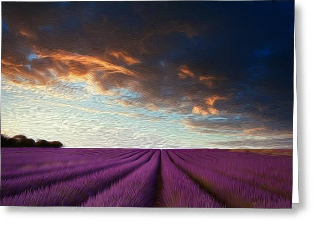Essential Greeting Cards - Stunning lavender field landscape at sunset in Summer Greeting Card by Matthew Gibson