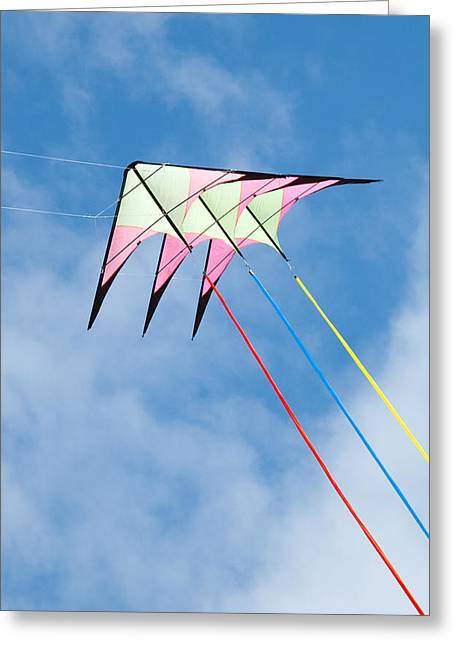 Stunt Flyer Greeting Cards - Stunt kite at the Windscape Kite Festival 2011 Greeting Card by Rob Huntley