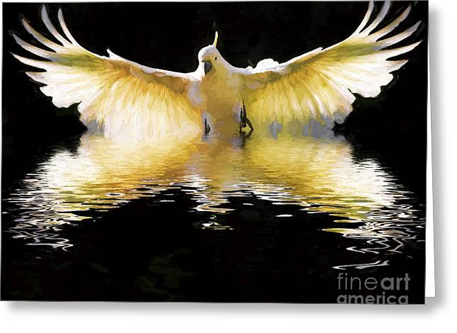 Parrot Digital Art Greeting Cards - Sulphur crested cockatoo in flight Greeting Card by Sheila Smart