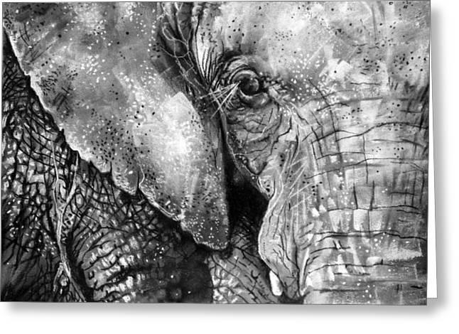Elephants Eye Greeting Cards - Sumatran Elephant Greeting Card by Sharlena Wood