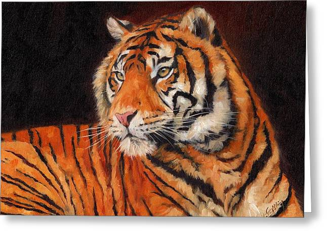 Tiger Greeting Cards - Sumatran Tiger  Greeting Card by David Stribbling