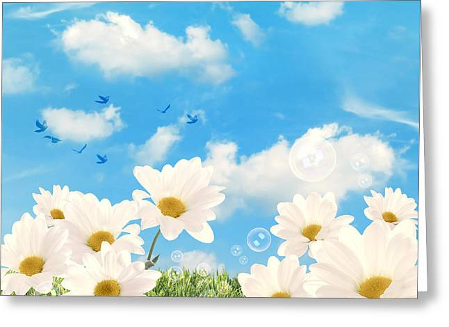 Daisy Greeting Cards - Summer Daisies Greeting Card by Amanda And Christopher Elwell