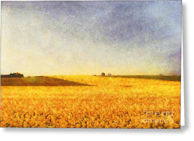 Landscape Oil Photographs Greeting Cards - Summer field Greeting Card by Pixel Chimp