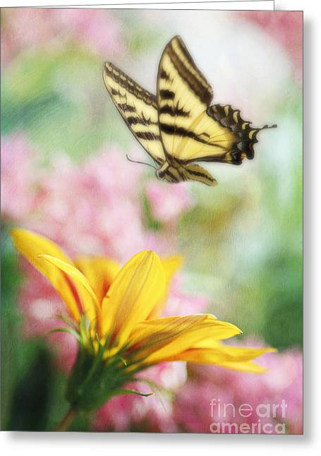Tiger Dream Greeting Cards - Summer Flight Greeting Card by Darren Fisher