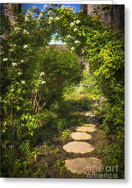 Trellis Greeting Cards - Summer garden and path Greeting Card by Elena Elisseeva