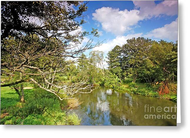 Lawn Chair Greeting Cards - Summer landscape Greeting Card by Michal Bednarek