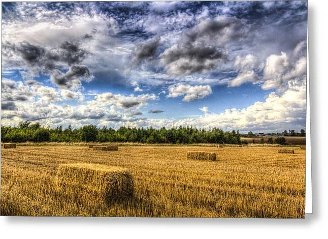 Making Hay Greeting Cards - Summer on the farm Greeting Card by David Pyatt