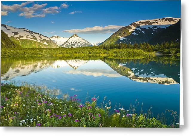 Summer Scenic In Portage Valley And Greeting Card by Michael DeYoung