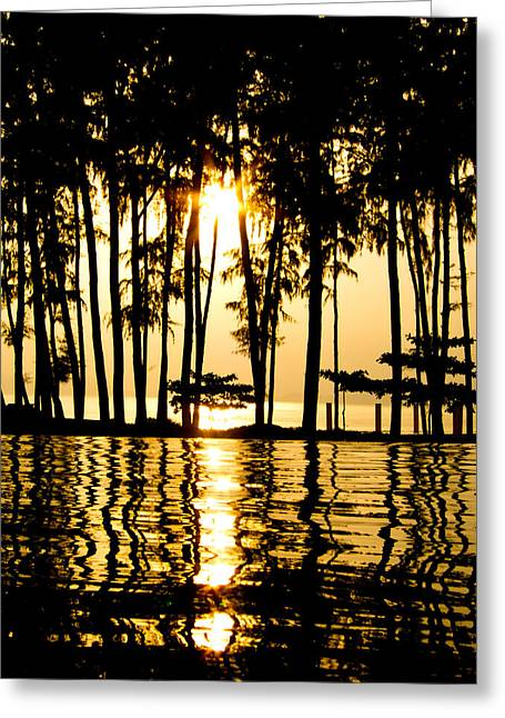 Backlit Greeting Cards - Sun Dance Greeting Card by Ulrich Schade