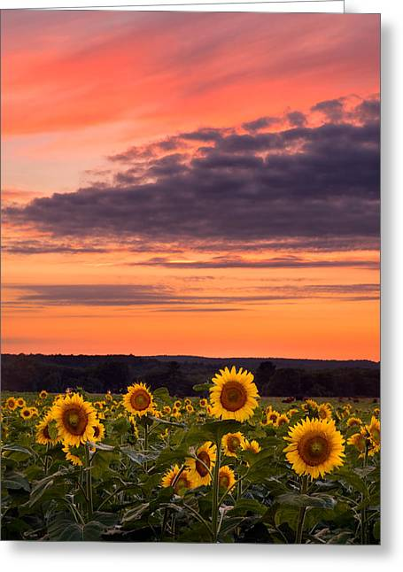 Griswold Connecticut Greeting Cards - Sun over Sun Greeting Card by Michael Blanchette