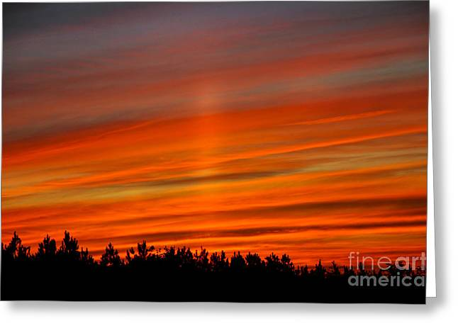 Dogwood Silhouette Greeting Cards - Sun Pillar Greeting Card by Stuart Mcdaniel