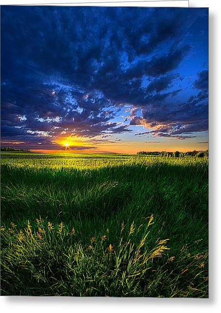 Geographic Greeting Cards - Sundance Greeting Card by Phil Koch