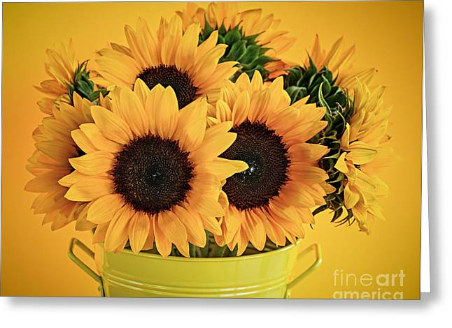 Flowering Greeting Cards - Sunflowers in vase Greeting Card by Elena Elisseeva