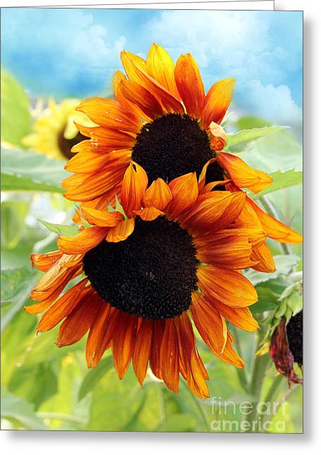 Thinking Of You Greeting Cards - Sunflowers  Greeting Card by Mark Ashkenazi