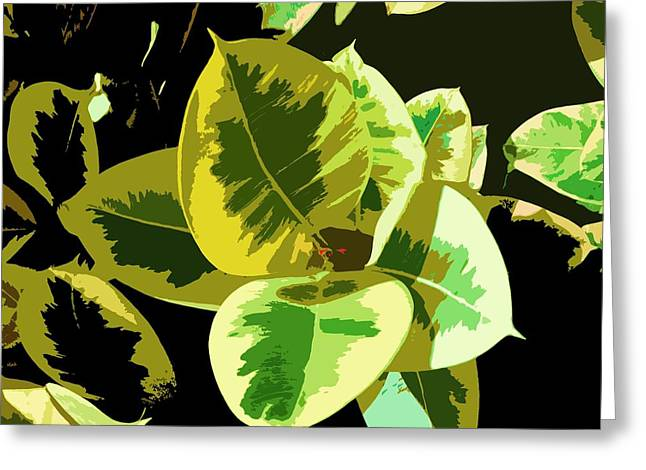 Alga Paintings Greeting Cards - Sunlight Greeting Card by Julio R Lopez Jr
