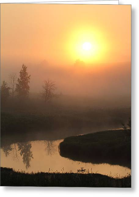 Alex Sukonkin Greeting Cards - Sunrise over a river Greeting Card by Alex Sukonkin