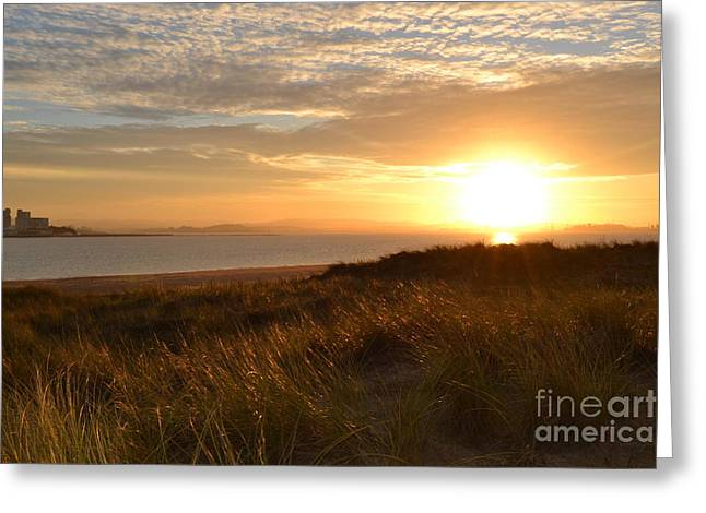 North Sea Greeting Cards - Sunset beach Greeting Card by Miryam  UrZa