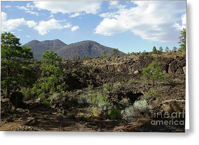 Usa Photographs Greeting Cards - Sunset Crater Volcano Greeting Card by Sophie Vigneault