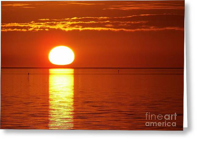 Cedar Key Greeting Cards - Sunset  Greeting Card by D Hackett