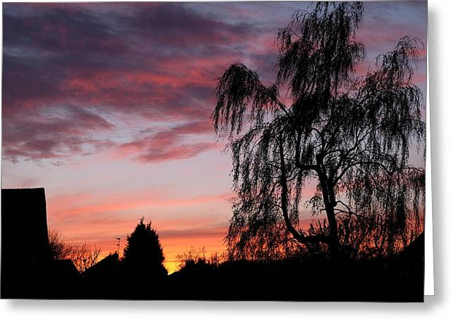 Mark Severn Greeting Cards - Sunset Greeting Card by Mark Severn