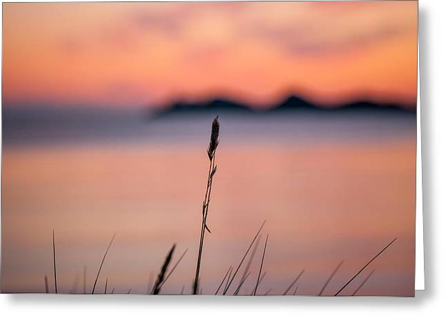 Mandal Greeting Cards - Sunset Greeting Card by Mirra Photography