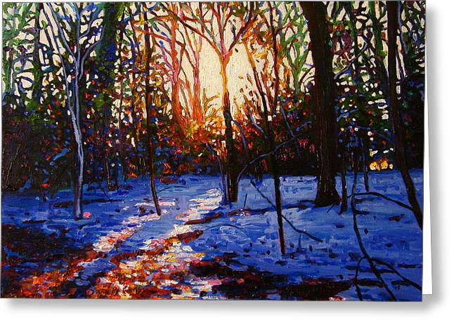 Snowy Woods Greeting Cards - Sunset On Snow Greeting Card by Helen White
