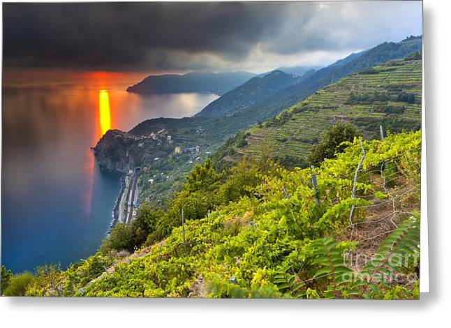 World Of Food Greeting Cards - Sunset over Corniglia Greeting Card by Sebastian Wasek
