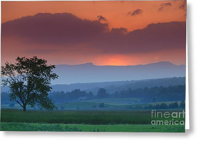 Cow Greeting Cards - Sunset over Mt. Mansfield in Stowe Vermont Greeting Card by Don Landwehrle