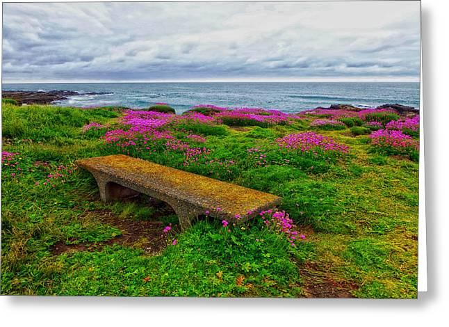 Stone Bench Greeting Cards - Surrounded by Flowers on the Oregon Coast Greeting Card by Mountain Dreams